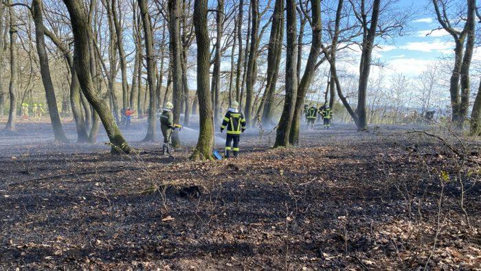 Waldbrand bei Punitz